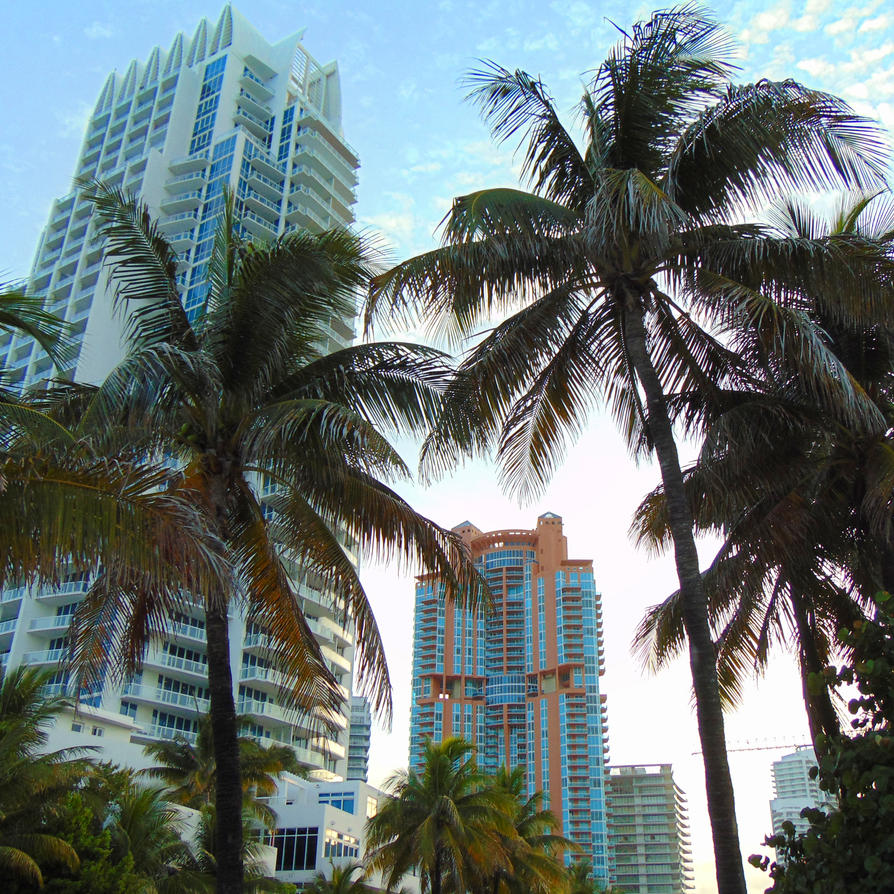 Miami Beach - Hotels and Trees by Infected-Beats