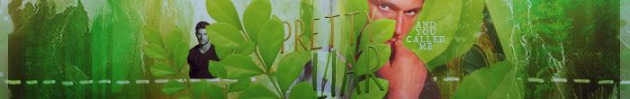 Pretty liar Banner by Maybeyou12