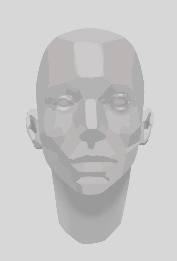 24th Mar 2017 - Face Planes Study by coderie