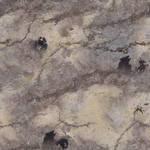 Rock Planet Texture - Flat