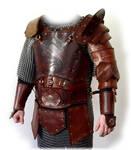 leather armor Dragon