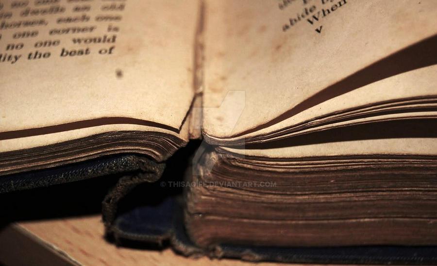 Fairytale Book. by thisaoife
