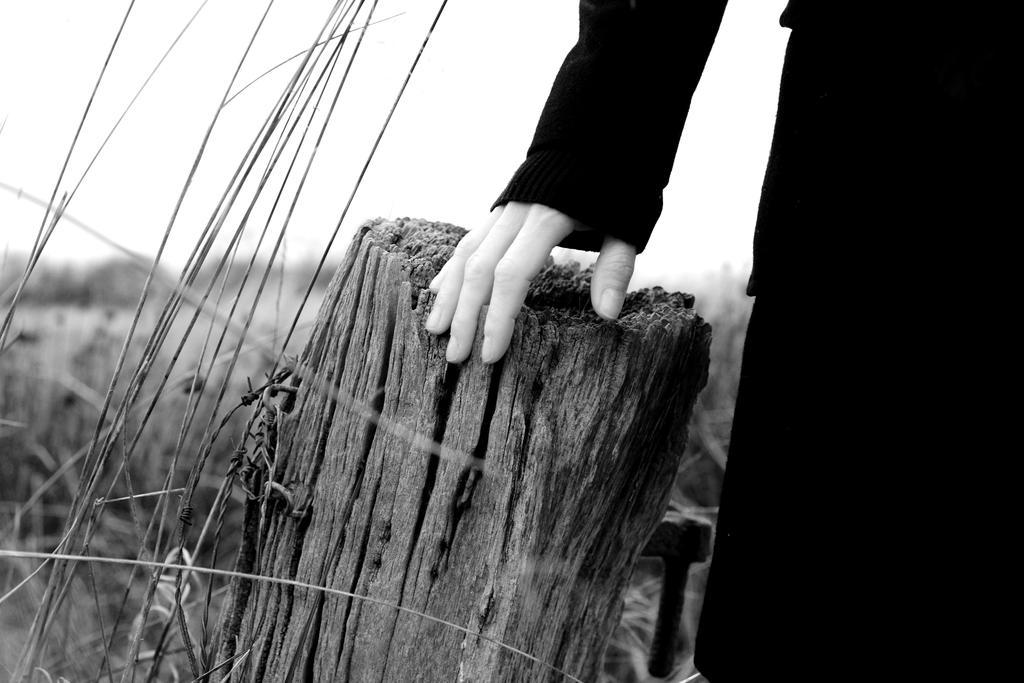 Le coeur voles by chriseastmids