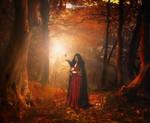 .:: Autumn Comes ::.