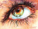 Eye in the Sky by XRlS