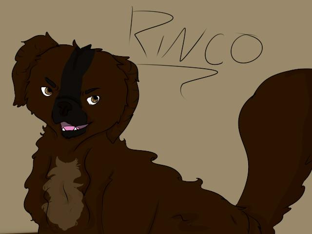 Rinco by Beachygrl92
