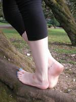 Close - Tree Climbing by Foxy-Feet