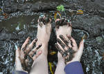Muddy Little Fingers and Toes