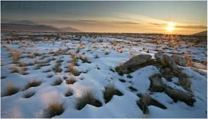 Sunset over Utah Grasslands by tourofnature