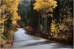 Road to Fall by tourofnature