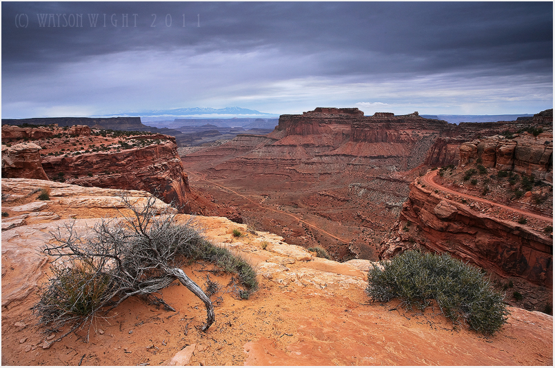 They Call it Canyonlands by tourofnature