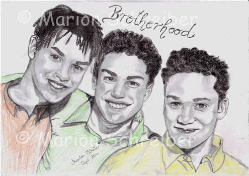 Brotherhood drawing