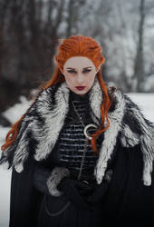 The Queen in the North by Usagitxo