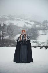 LADY OF WINTERFELL by Usagitxo