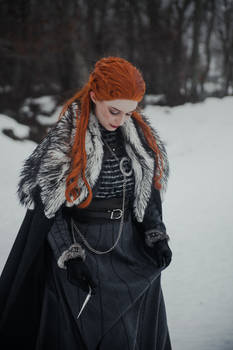 Sansa Stark of Winterfell