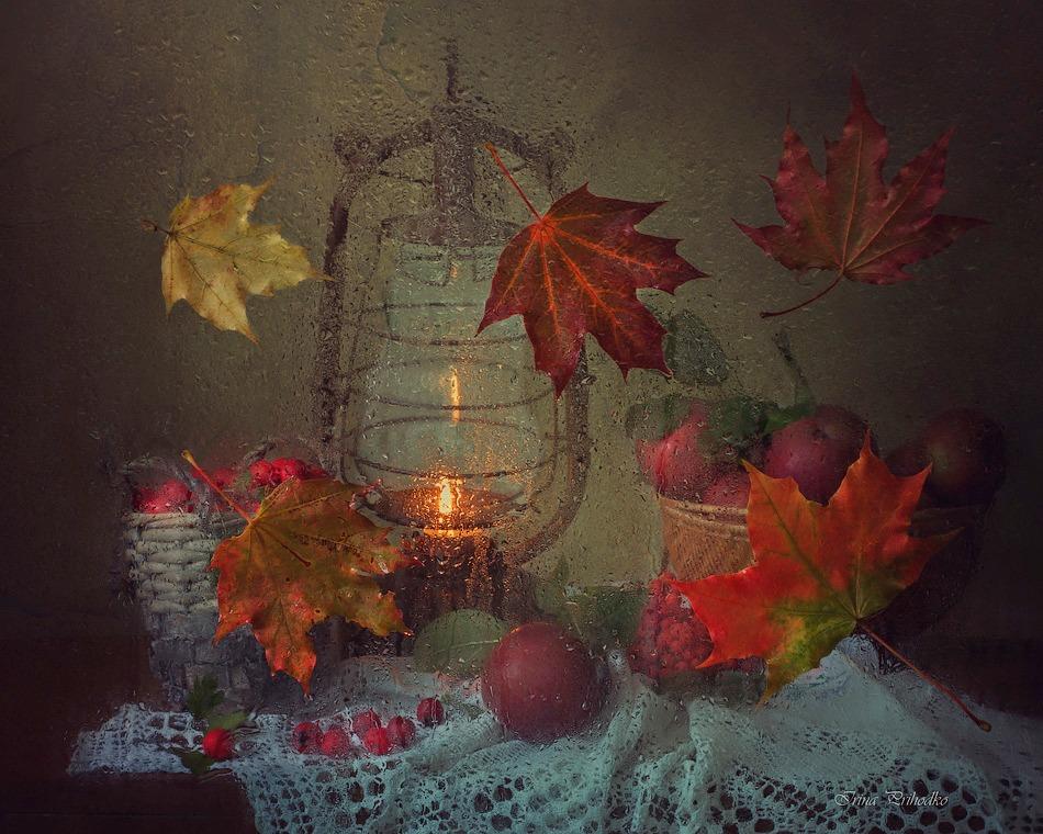 The September rain by Daykiney