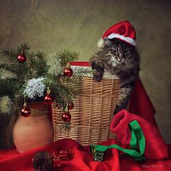 Santa called? by Daykiney