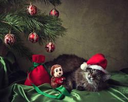 Santa Myaus