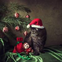 Santa Myaus by Daykiney
