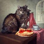 Pancake week for the cat