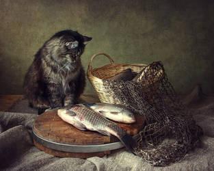 Cat fisher by Daykiney