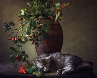 Sleeping gift autumn by Daykiney