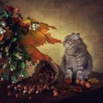 Autumn toys