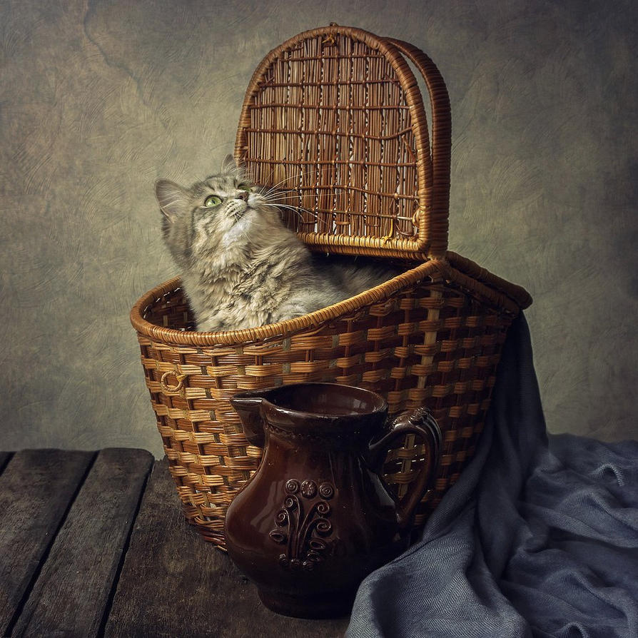 Masyanya in a basket by Daykiney