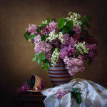 Multicolored lilacs