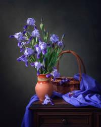 Cool beauty of irises