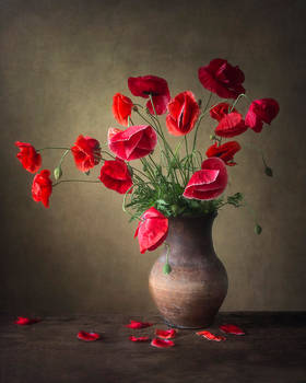 Bouquet with the poppies