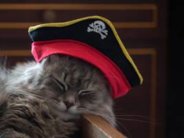 Sleeping Pirate by Daykiney