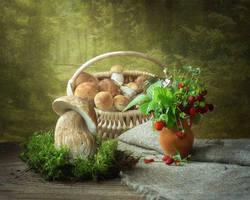 Mushrooms summer by Daykiney