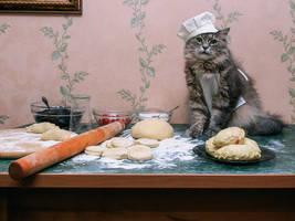Little Chef Chef