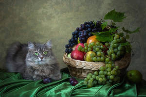 Masyanya and fruit basket by Daykiney