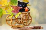 Black biker by Daykiney