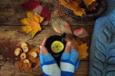 Warm  and cozy autumn by Daykiney