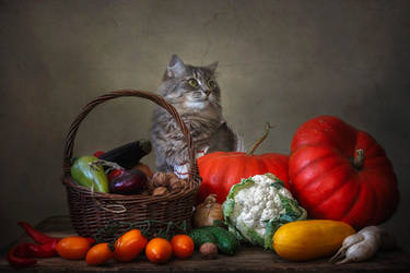 Masyanya and autumn harvest by Daykiney