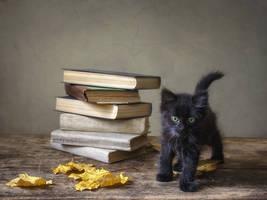 Little black schoolgirl by Daykiney