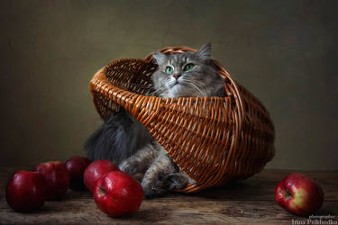 Masyanya in the basket of apples