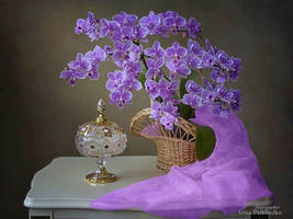 Still life with orchids by Daykiney