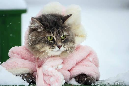 Masyanya walks in the fresh snow