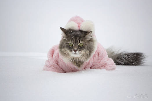 One in a fluffy snowdrift