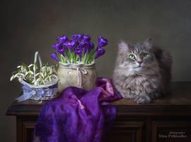 It's spring, isn't it? by Daykiney