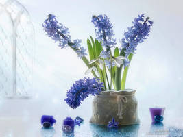 Cold spring by Daykiney