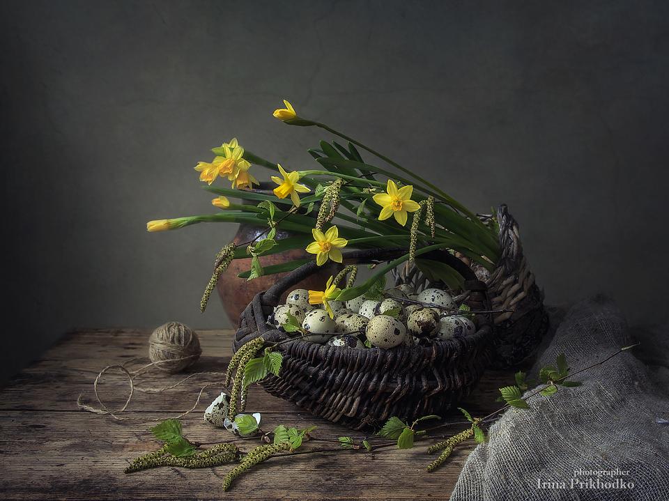 Rustic Spring by Daykiney