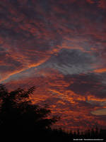 Clouds by BennyTheBenny