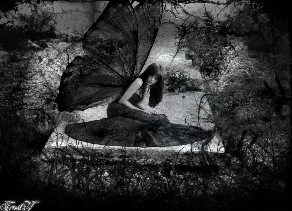.Dieing Maggot Of Black Fairy. By Frostmaster On DeviantArt