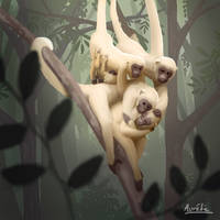 Weeklies #3-18 Muriqui by Aurelie-Charmeau