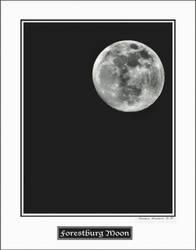 FORESTBURG MOON by lightpro77